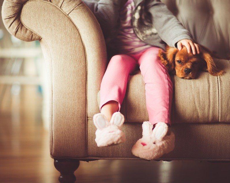 איזו חית מחמד מתאימה לבית עם ילדים